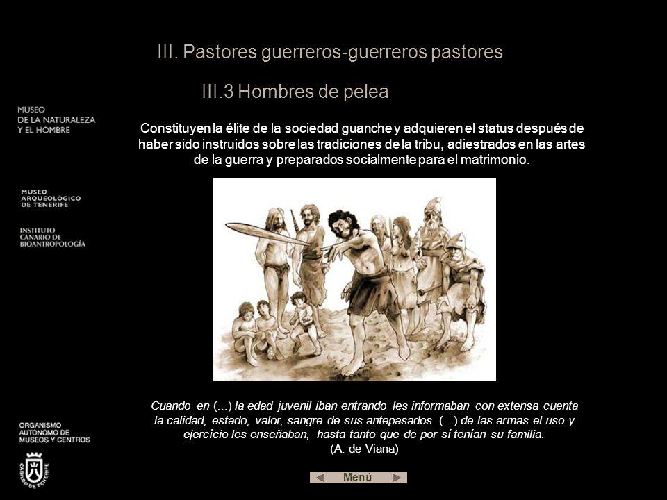III. Pastores guerreros-guerreros pastores III.3 Hombres de pelea Constituyen la élite de la sociedad guanche y adquieren el status después de haber s