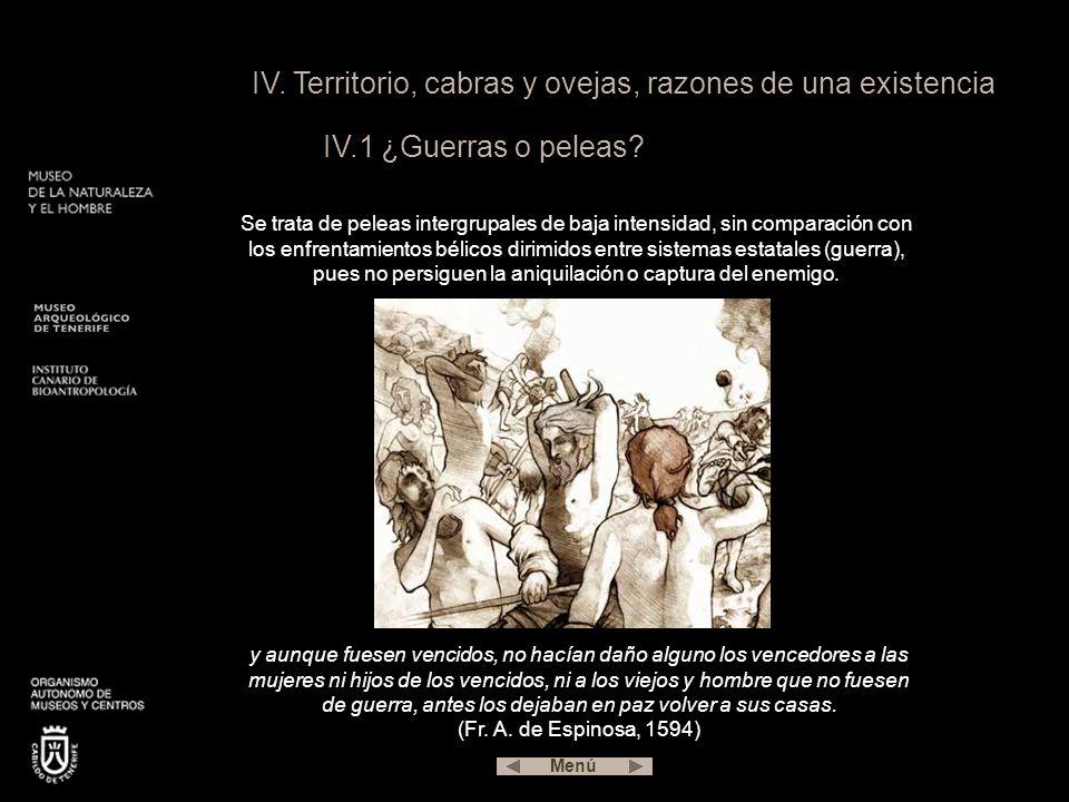 IV.Territorio, cabras y ovejas, razones de una existencia IV.1 ¿Guerras o peleas.