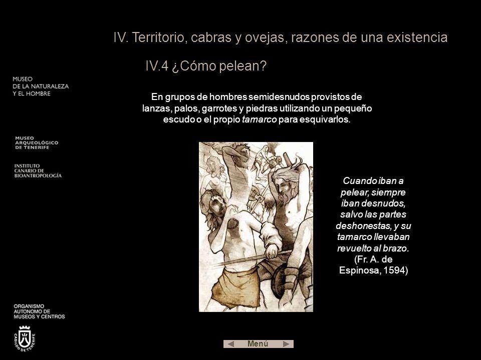 IV.Territorio, cabras y ovejas, razones de una existencia IV.4 ¿Cómo pelean.