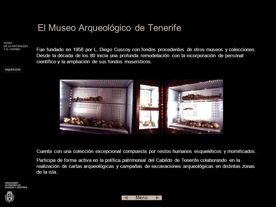 Fue fundado en 1958 por L.Diego Cuscoy con fondos procedentes de otros museos y colecciones.