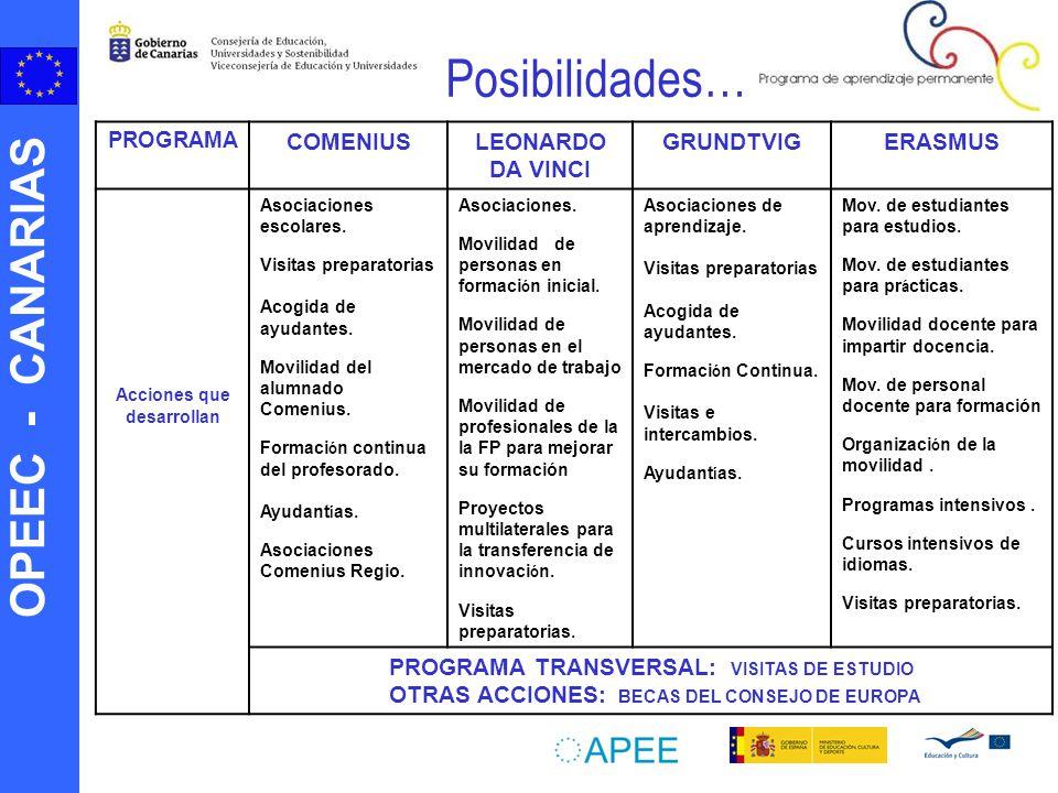 OPEEC - CANARIAS Posibilidades… PROGRAMA COMENIUSLEONARDO DA VINCI GRUNDTVIGERASMUS Acciones que desarrollan Asociaciones escolares.
