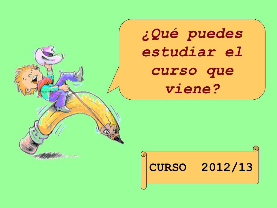 ¿Qué puedes estudiar el curso que viene CURSO 2012/13
