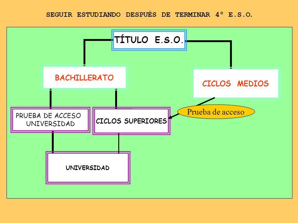 SIN TITULO E.S.O.