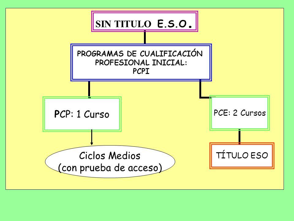 EDUCACIÓN DE ADULTOS (18 años o tener contrato de trabajo) TÍTULO E.S.O. BACHILLERATO CICLOS MEDIOS