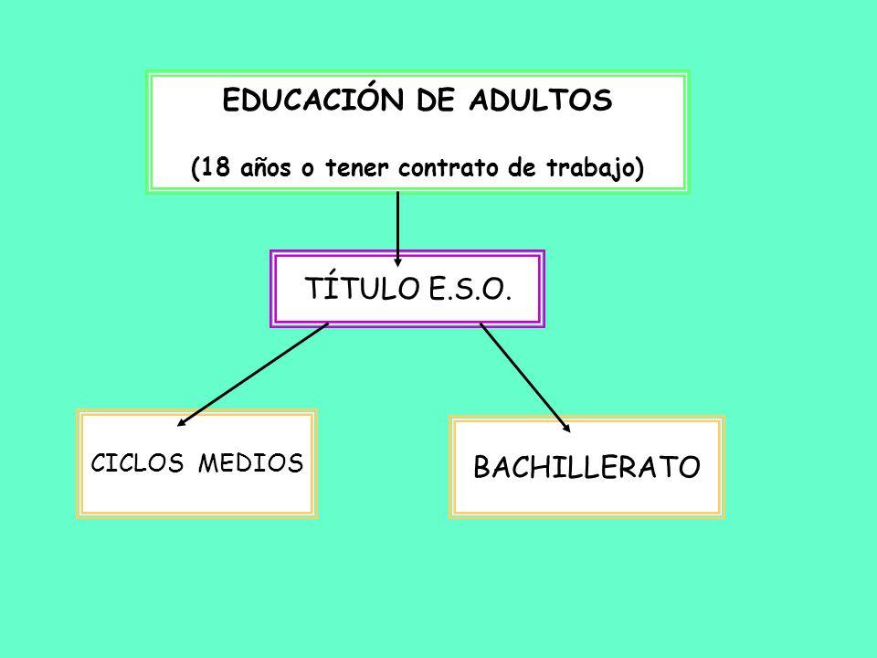 Materias obligatorias.Historia de la Filosofía. Filosofía y ciudadanía.