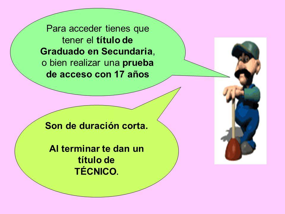 Para acceder tienes que tener el título de Graduado en Secundaria, o bien realizar una prueba de acceso con 17 años Son de duración corta.