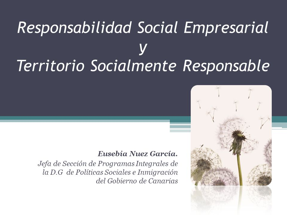 Responsabilidad Social Empresarial y Territorio Socialmente Responsable Eusebia Nuez García. Jefa de Sección de Programas Integrales de la D.G de Polí