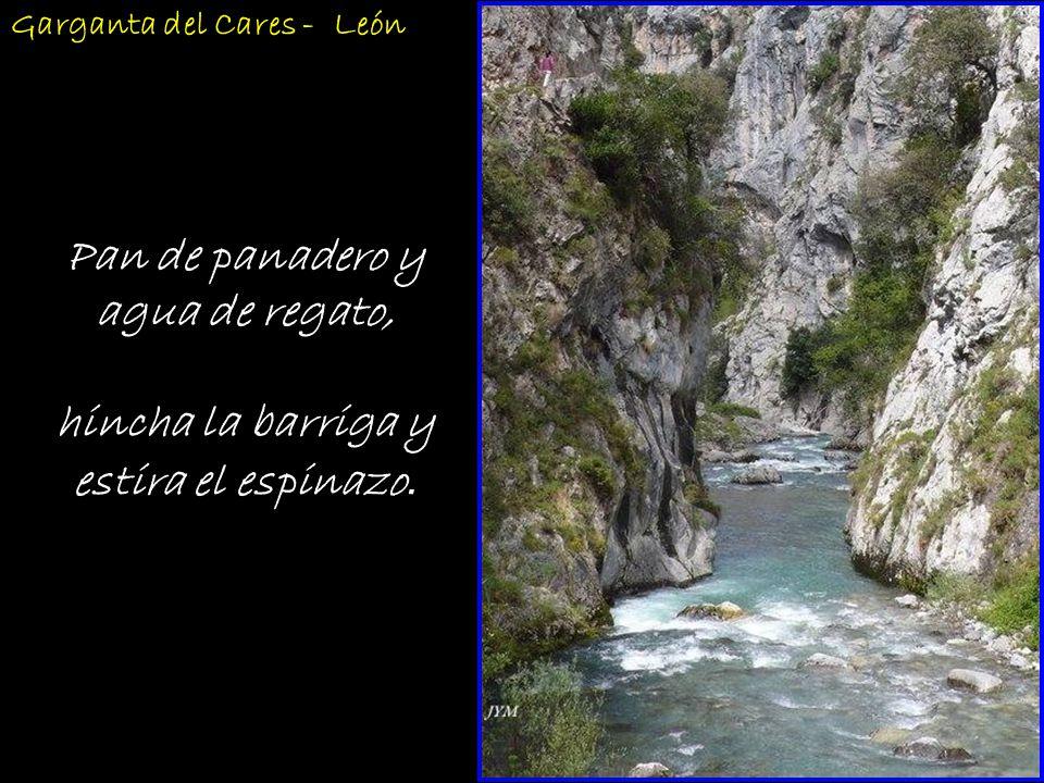 Agua, barro y basura, crian buena verdura. Rio Duratón - Segovia