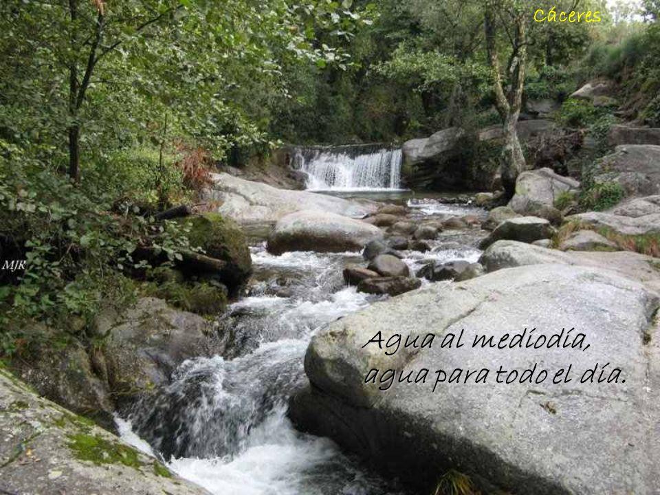 Rio Bernesga - León Abril, abril, tu agua para otro, tu sol para mí.