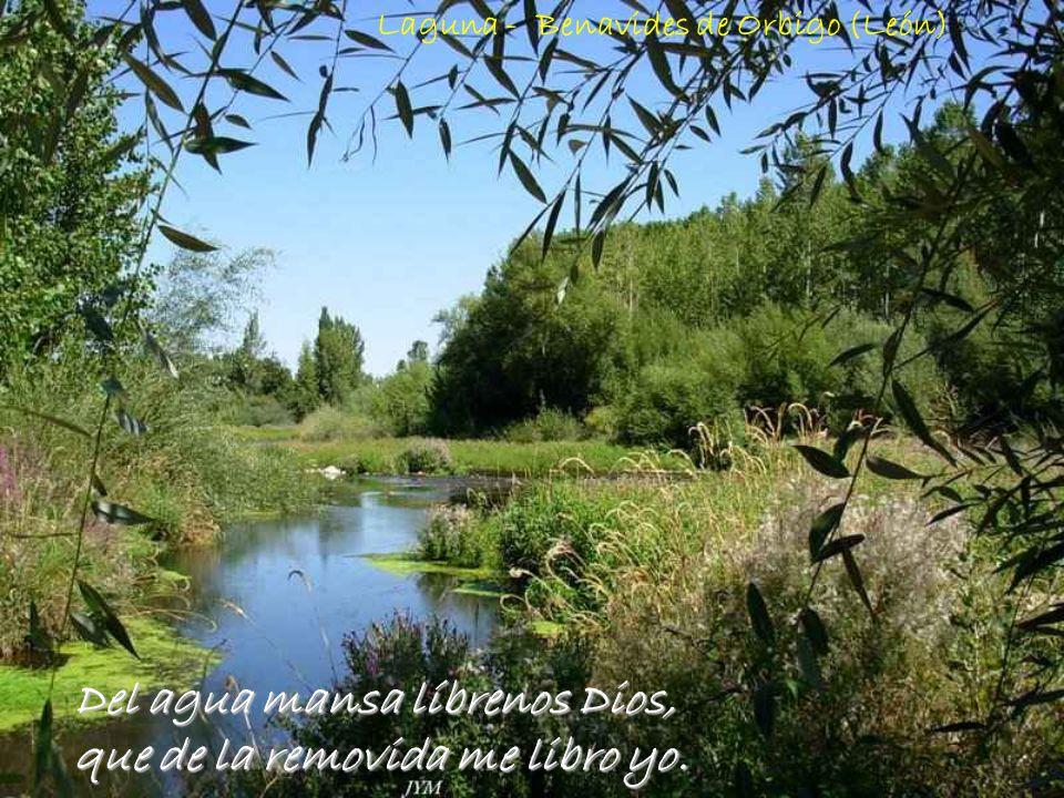 Al cabo de los años mil, vuelven las aguas al carril. Rio Orbigo - León