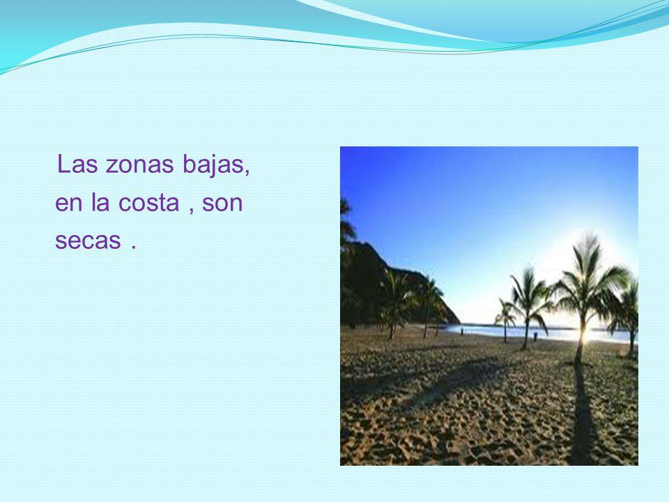 Las zonas bajas, en la costa, son secas.