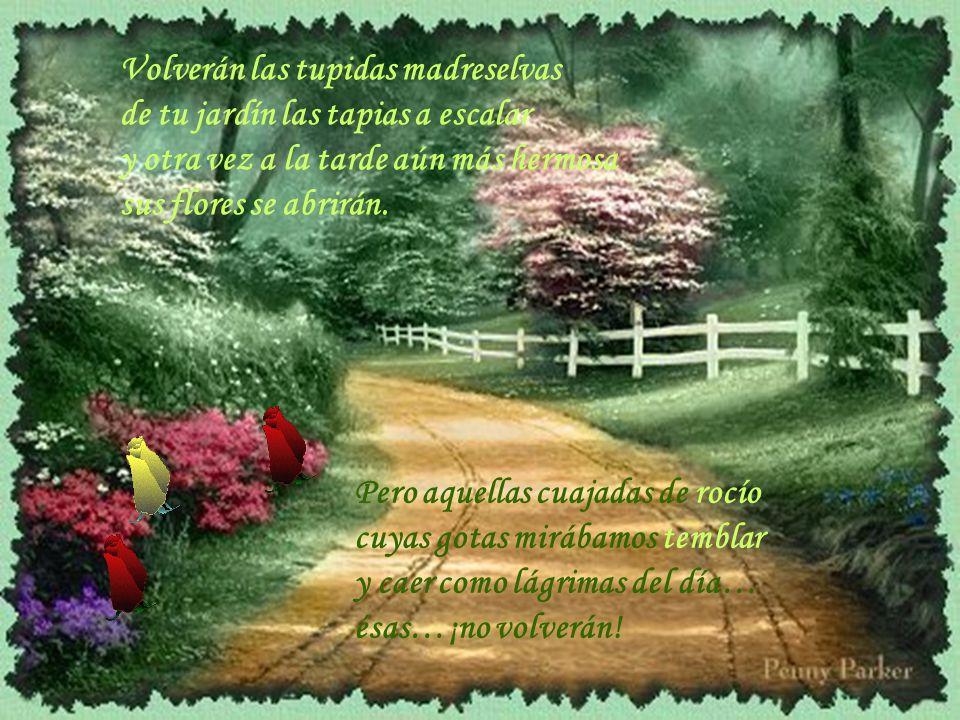 Volverán las tupidas madreselvas de tu jardín las tapias a escalar y otra vez a la tarde aún más hermosa sus flores se abrirán.