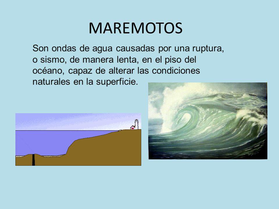 Las causas que provocan los tsunamis son las placas tectónicas que chocan y el agua entra en el hueco que forman y se retira, baja la marea y se forma