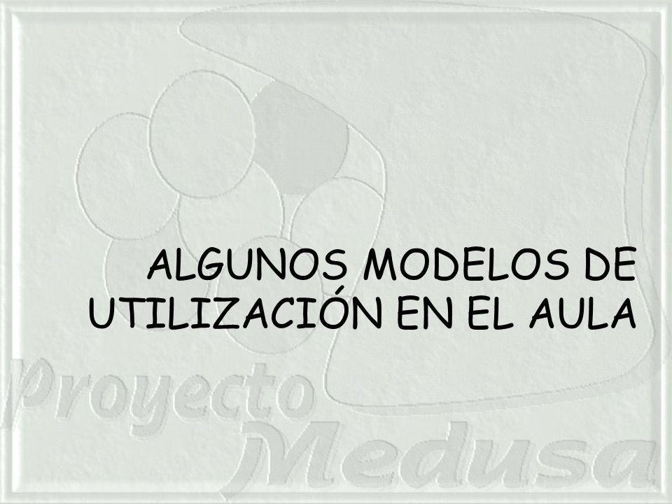 ALGUNOS MODELOS DE UTILIZACIÓN EN EL AULA