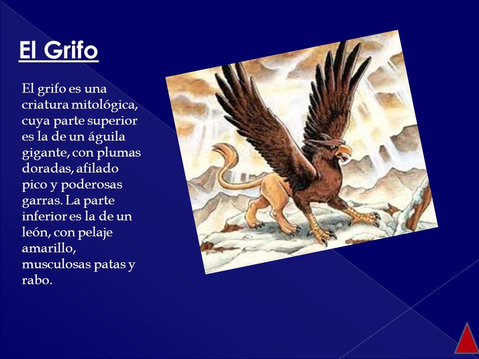 El grifo es una criatura mitológica, cuya parte superior es la de un águila gigante, con plumas doradas, afilado pico y poderosas garras. La parte inf