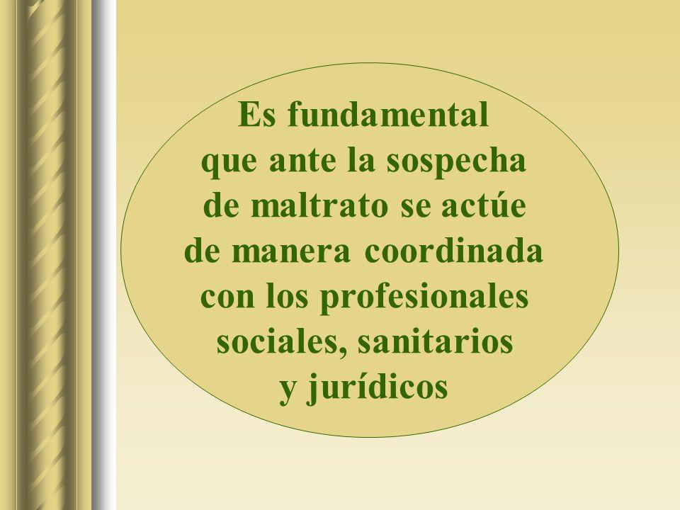 Es fundamental que ante la sospecha de maltrato se actúe de manera coordinada con los profesionales sociales, sanitarios y jurídicos