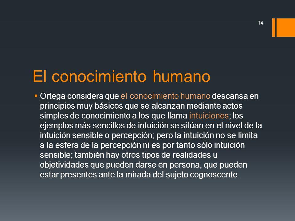 El conocimiento humano Ortega considera que el conocimiento humano descansa en principios muy básicos que se alcanzan mediante actos simples de conoci