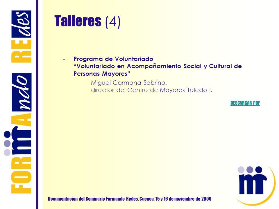 Talleres (4) Documentación del Seminario Formando Redes. Cuenca, 15 y 16 de noviembre de 2006 - Programa de Voluntariado Voluntariado en Acompañamient