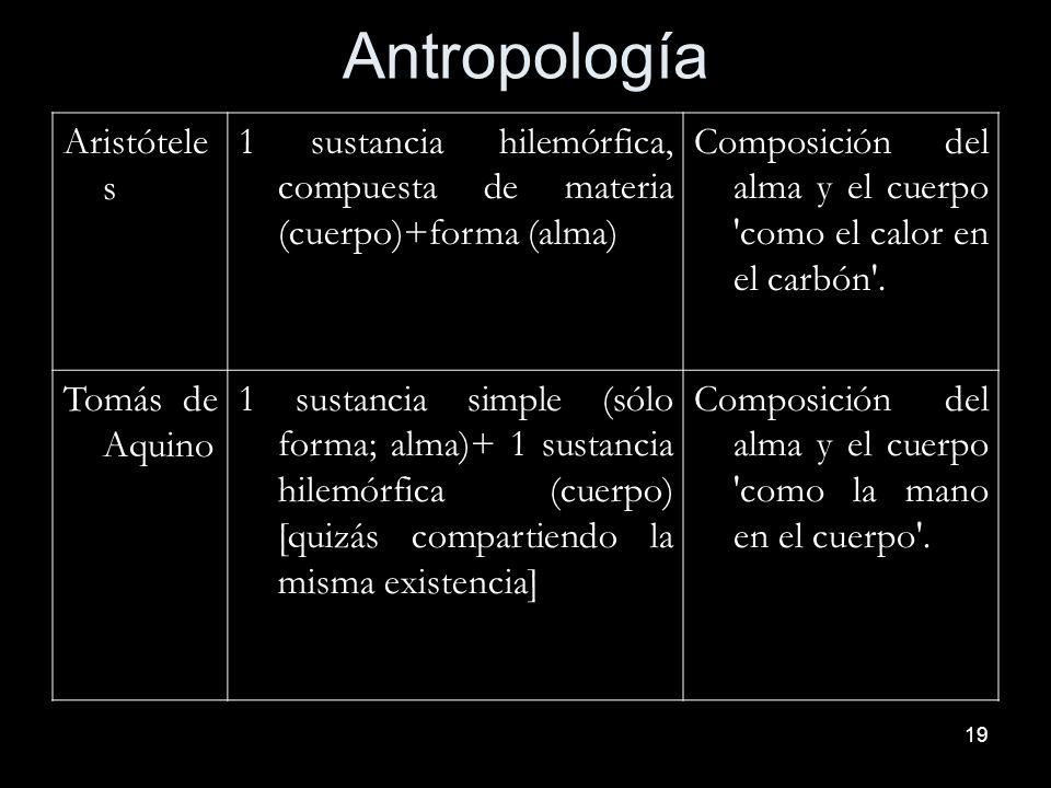 19 Antropología Aristótele s 1 sustancia hilemórfica, compuesta de materia (cuerpo)+forma (alma) Composición del alma y el cuerpo 'como el calor en el
