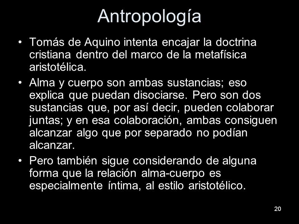 20 Antropología Tomás de Aquino intenta encajar la doctrina cristiana dentro del marco de la metafísica aristotélica. Alma y cuerpo son ambas sustanci