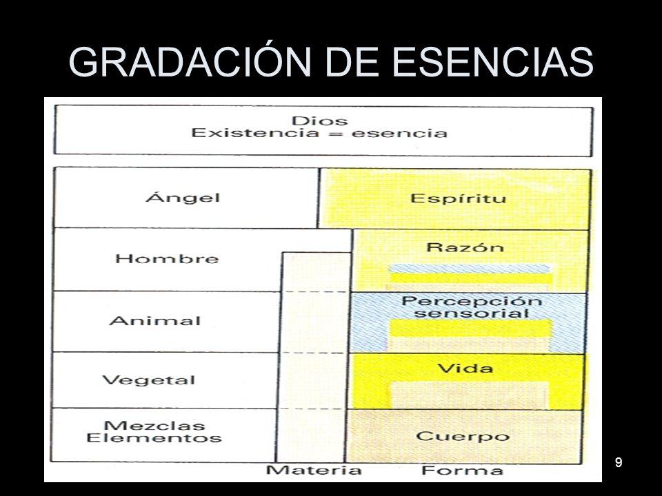 9 GRADACIÓN DE ESENCIAS