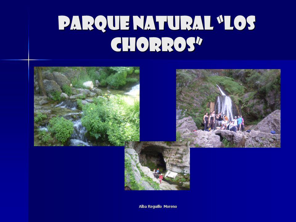 Alba Reguillo Moreno Parque natural los chorros