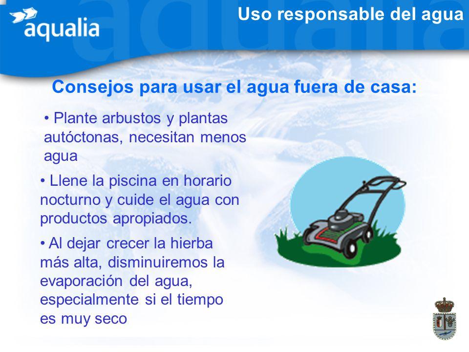 Uso responsable del agua Consejos para usar el agua fuera de casa: Plante arbustos y plantas autóctonas, necesitan menos agua Al dejar crecer la hierb