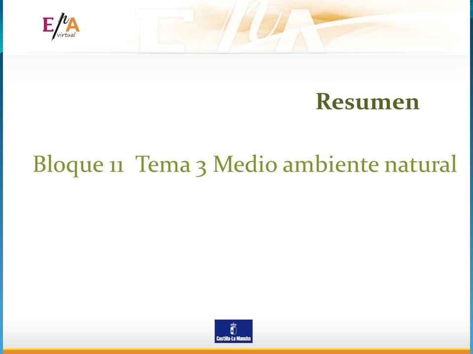 Bloque 11 Tema 3 Medio ambiente natural Resumen