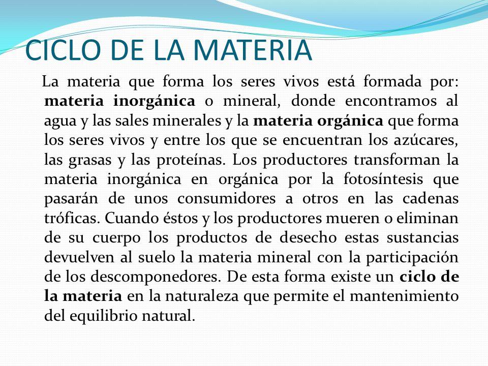CICLO DE LA MATERIA La materia que forma los seres vivos está formada por: materia inorgánica o mineral, donde encontramos al agua y las sales mineral