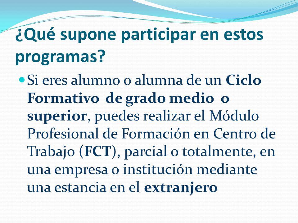 ¿Qué supone participar en estos programas? Si eres alumno o alumna de un Ciclo Formativo de grado medio o superior, puedes realizar el Módulo Profesio
