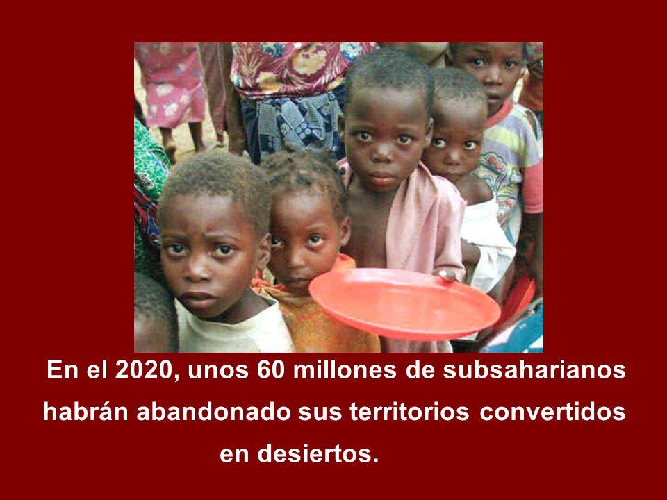 En el 2020, unos 60 millones de subsaharianos en desiertos. habrán abandonado sus territorios convertidos