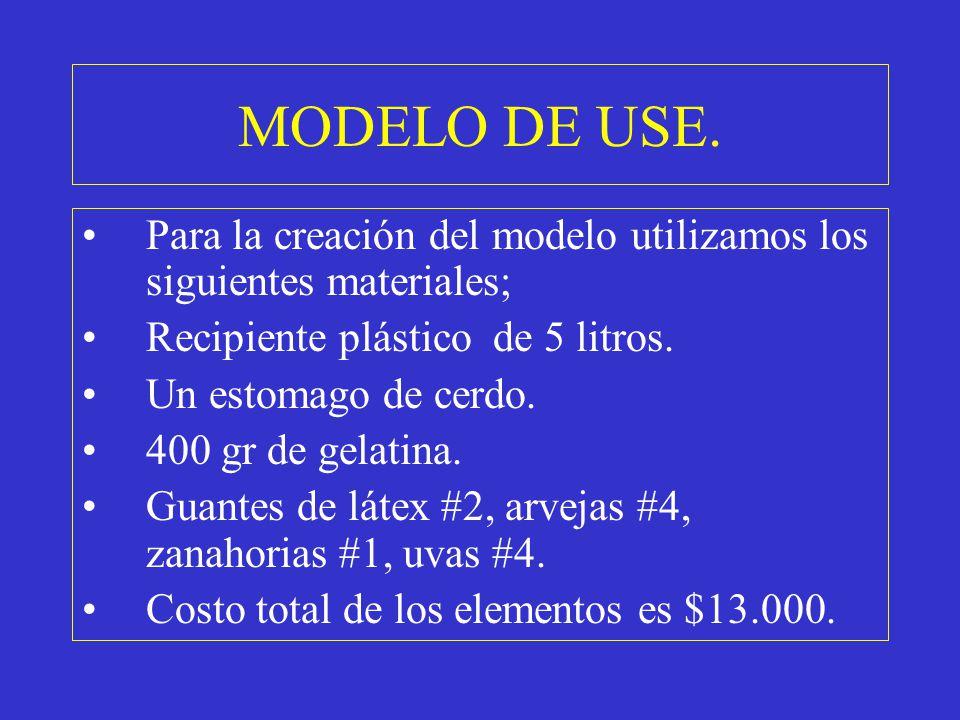 MODELO DE USE. Para la creación del modelo utilizamos los siguientes materiales; Recipiente plástico de 5 litros. Un estomago de cerdo. 400 gr de gela