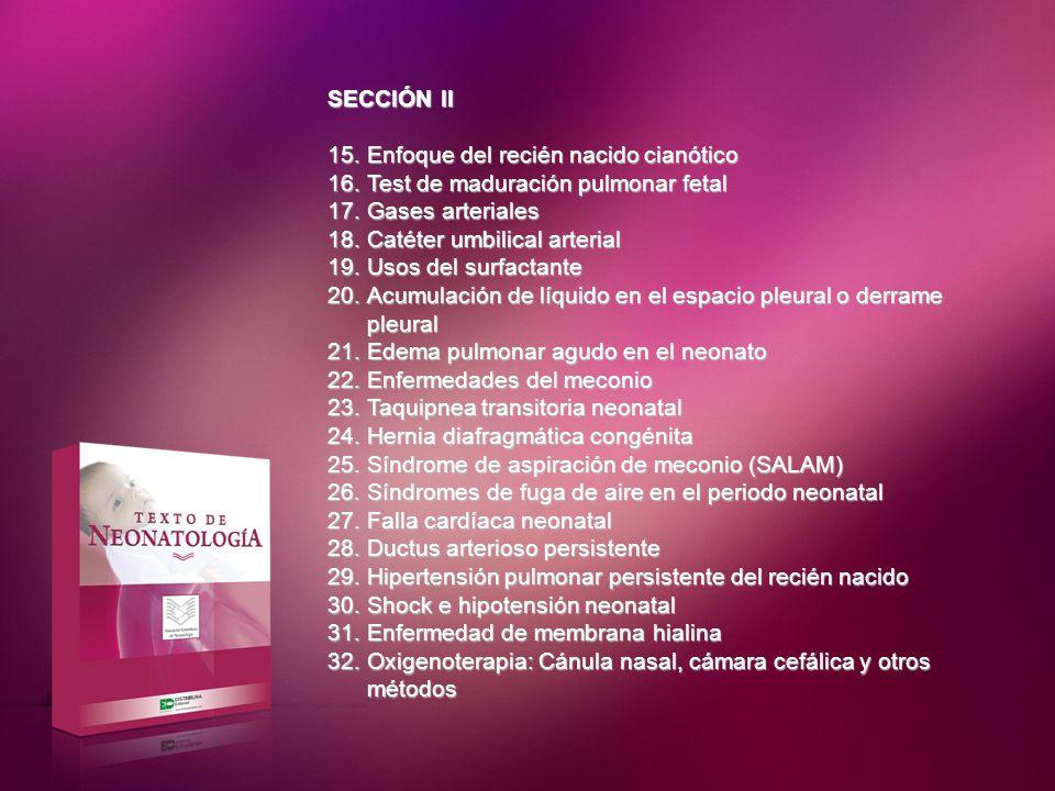 SECCIÓN III 33.Enfoque actual de las infecciones perinatales 34.