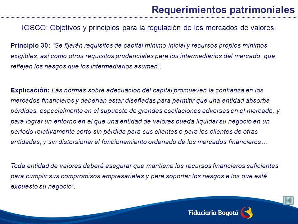 IOSCO: Objetivos y principios para la regulación de los mercados de valores. Principio 30: Se fijarán requisitos de capital mínimo inicial y recursos