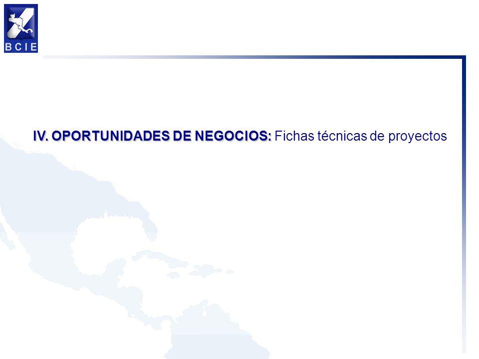 IV. OPORTUNIDADES DE NEGOCIOS: IV. OPORTUNIDADES DE NEGOCIOS: Fichas técnicas de proyectos