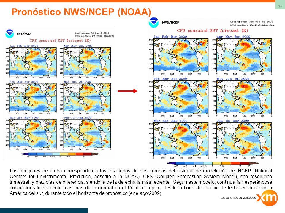 13 Las imágenes de arriba corresponden a los resultados de dos corridas del sistema de modelación del NCEP (National Centers for Environmental Predict
