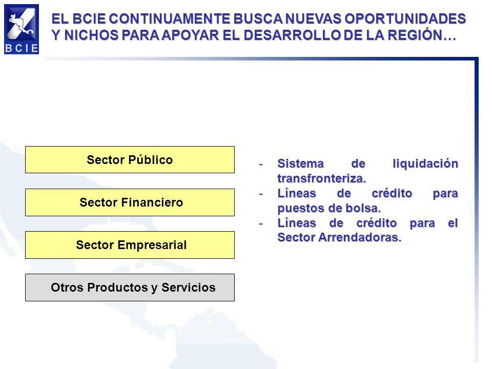 -Sistema de liquidación transfronteriza. -Líneas de crédito para puestos de bolsa.