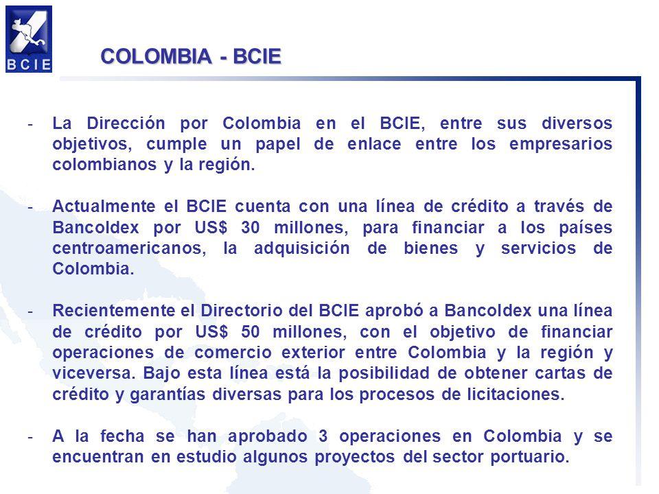 -La Dirección por Colombia en el BCIE, entre sus diversos objetivos, cumple un papel de enlace entre los empresarios colombianos y la región.