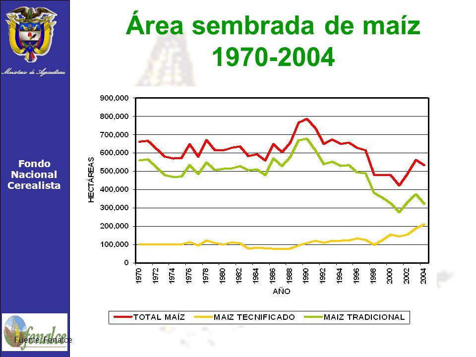 Ministerio de Agricultura Fondo Nacional Cerealista Área sembrada de maíz 1970-2004 Fuente: Fenalce