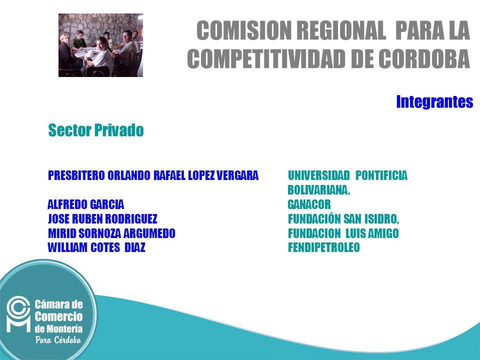 Integrantes Sector Privado PRESBITERO ORLANDO RAFAEL LOPEZ VERGARAUNIVERSIDAD PONTIFICIA BOLIVARIANA.