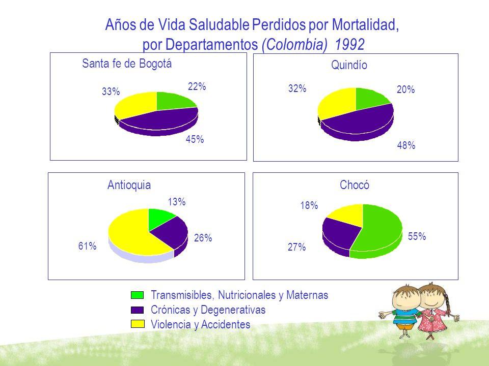 Años de Vida Saludable Perdidos por Mortalidad, por Departamentos (Colombia) 1992 Santa fe de Bogotá 22% 45% 33% Quindío 20% 48% 32% Antioquia 13% 26%