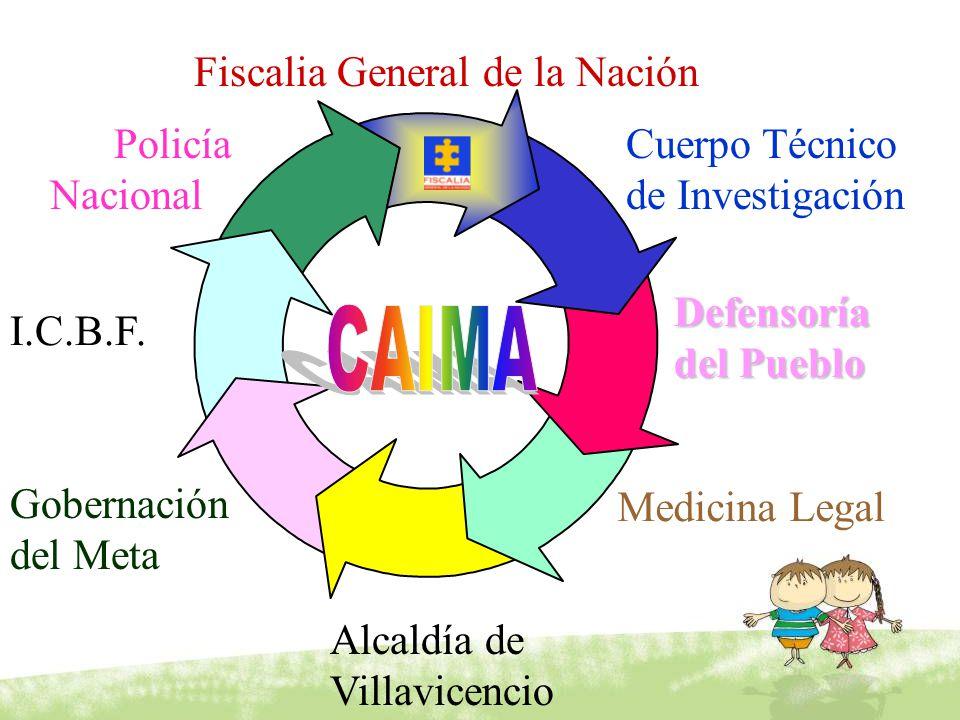 Fiscalia General de la Nación Cuerpo Técnico de Investigación I.C.B.F. Defensoría del Pueblo Medicina Legal Policía Nacional Gobernación del Meta Alca