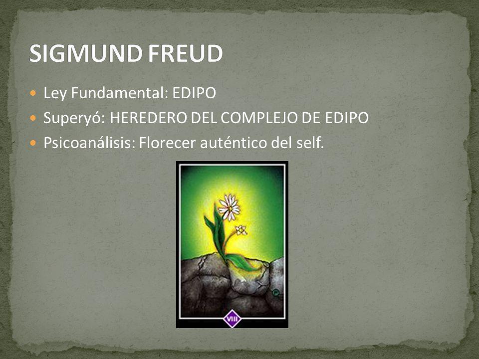 Ley Fundamental: EDIPO Superyó: HEREDERO DEL COMPLEJO DE EDIPO Psicoanálisis: Florecer auténtico del self.