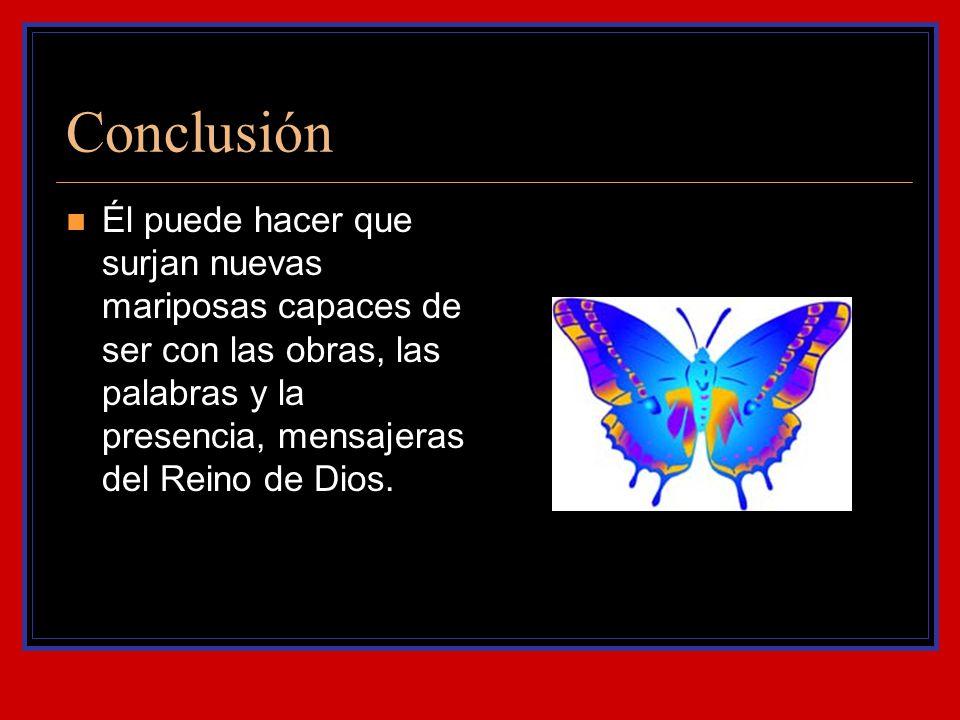 Conclusión Él puede hacer que surjan nuevas mariposas capaces de ser con las obras, las palabras y la presencia, mensajeras del Reino de Dios.