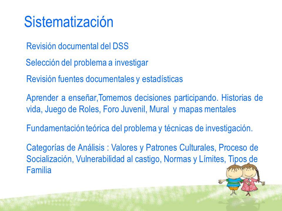 Sistematización Revisión documental del DSS Revisión fuentes documentales y estadísticas Selección del problema a investigar Fundamentación teórica de
