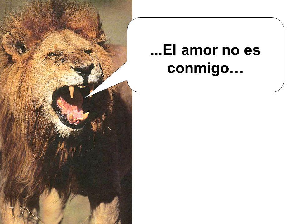 ...El amor no es conmigo…