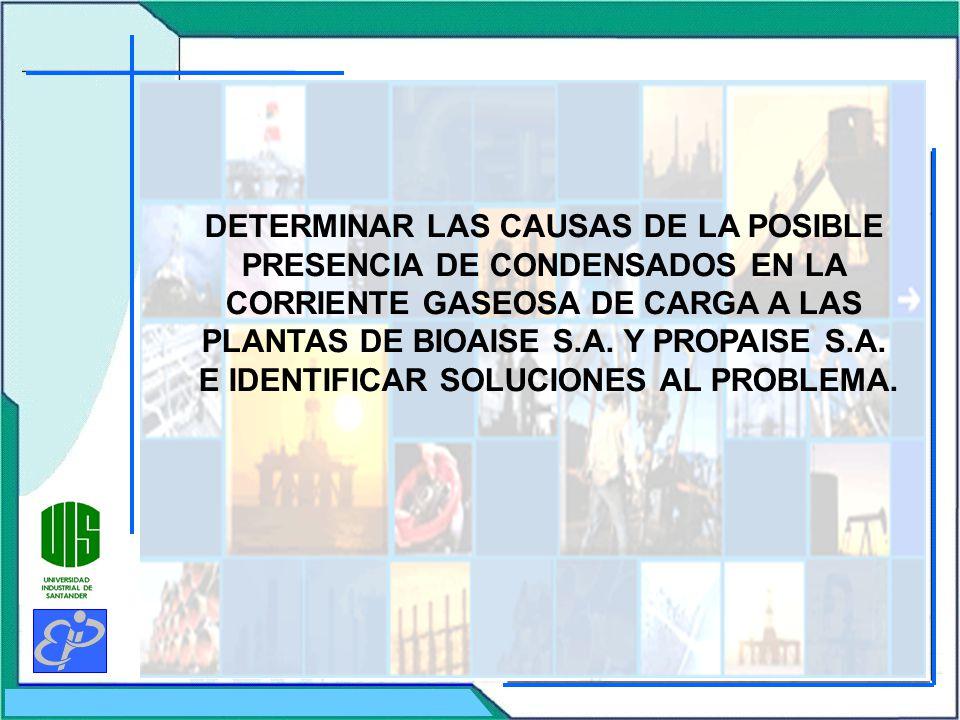 DETERMINAR LAS CAUSAS DE LA POSIBLE PRESENCIA DE CONDENSADOS EN LA CORRIENTE GASEOSA DE CARGA A LAS PLANTAS DE BIOAISE S.A.