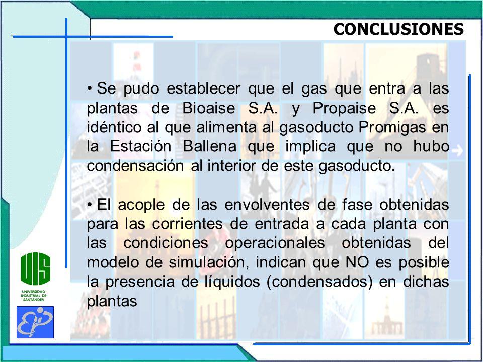 CONCLUSIONES Se pudo establecer que el gas que entra a las plantas de Bioaise S.A.