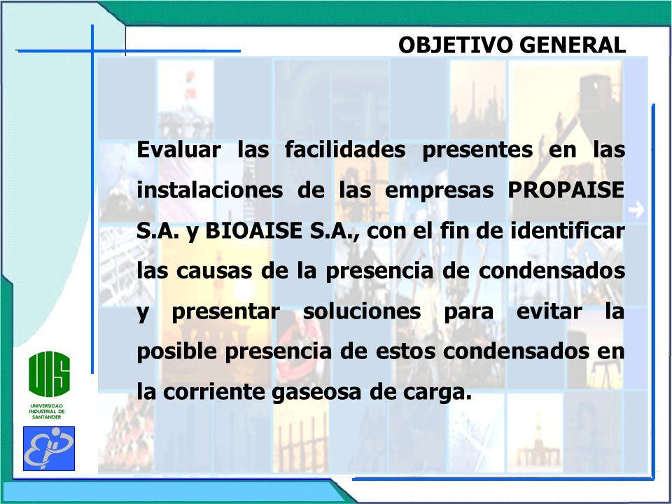 OBJETIVO GENERAL Evaluar las facilidades presentes en las instalaciones de las empresas PROPAISE S.A.