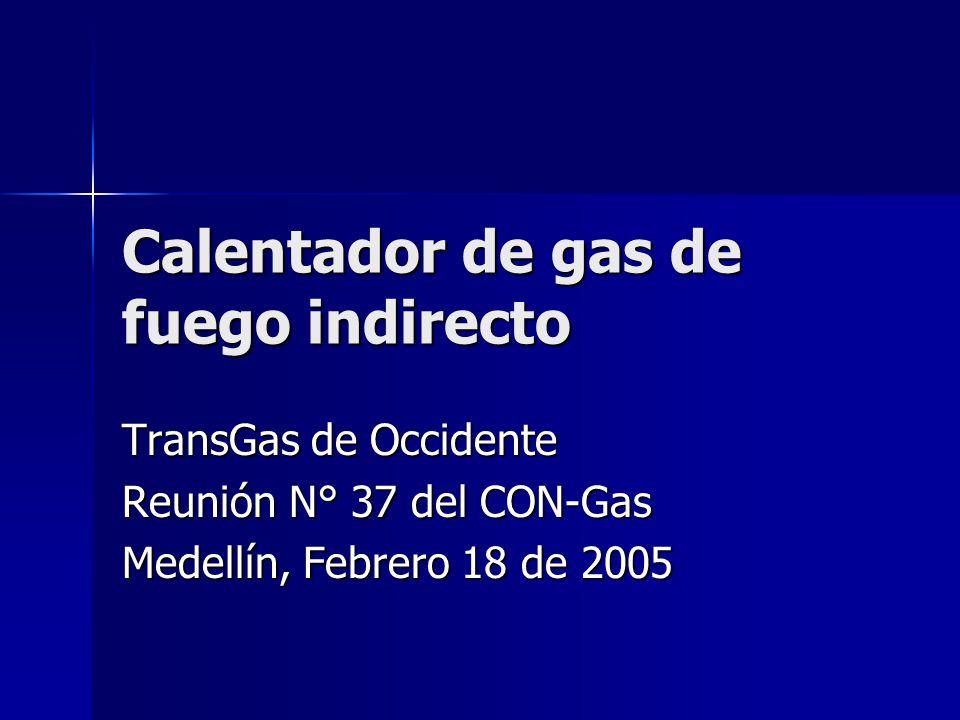 Calentador de gas de fuego indirecto TransGas de Occidente Reunión N° 37 del CON-Gas Medellín, Febrero 18 de 2005